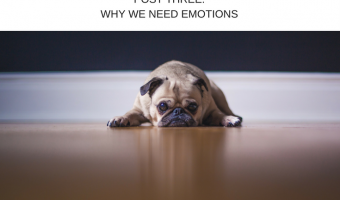 Essential Oils & Emotions Part 3: We Need Emotions