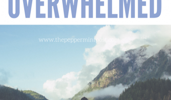 5 Things to Do When You Feel Overwhelmed