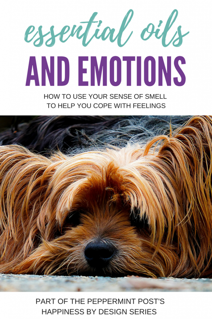 Stress Relief | Coping Skills | Emotional Intelligence | How to use Essential Oils